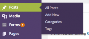 Navigate to Posts Categories